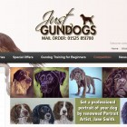 Just Gun Dogs